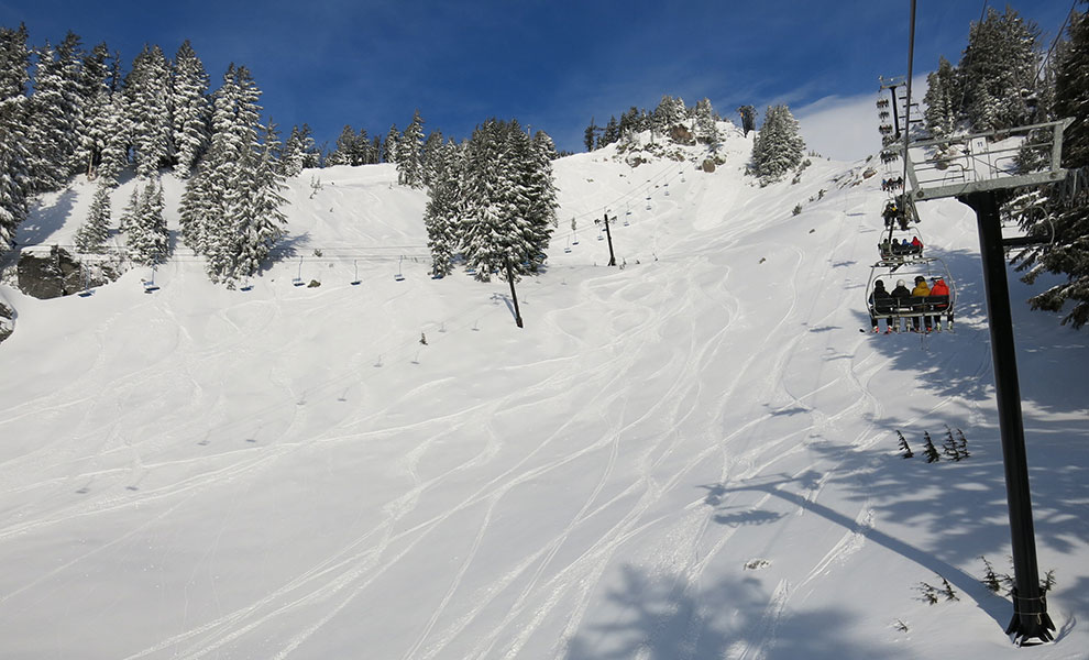 meadows first powder day