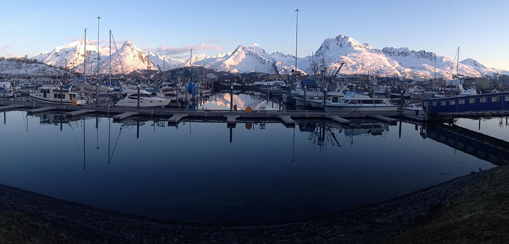 Valdez harbor view