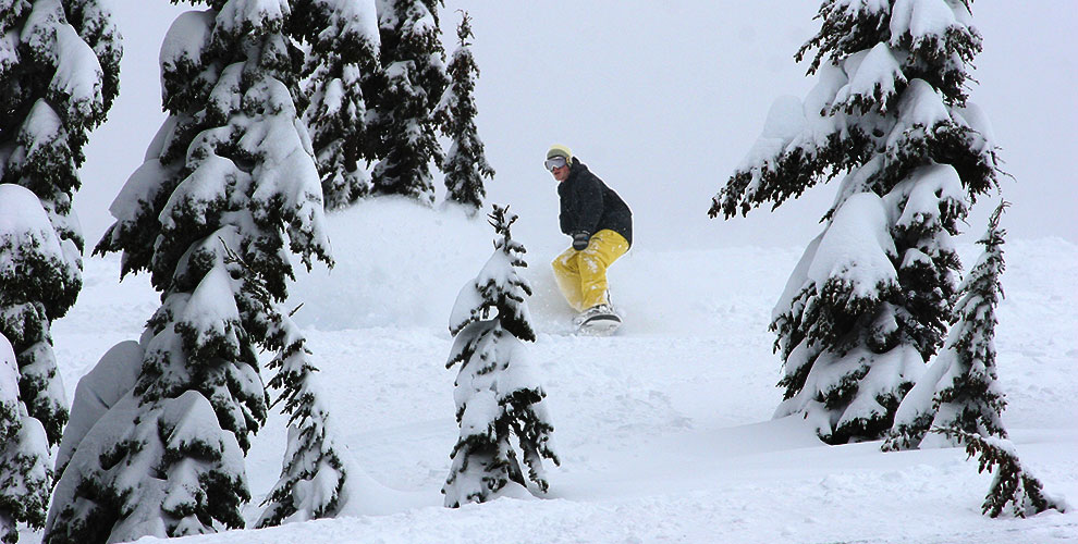 Tyler Davis snowboarding powder on mt hood