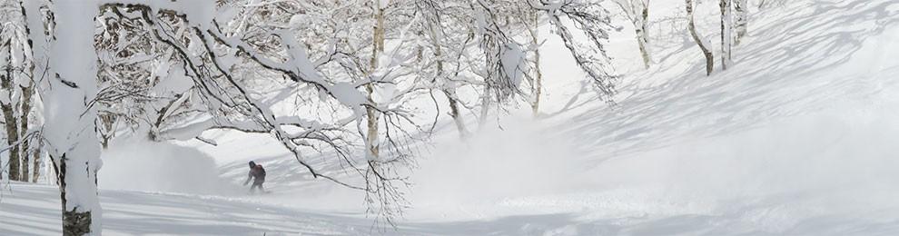 Hokkaido Japan Snowboarding Experience